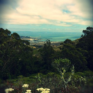 View of the bay during my 8 mile run up the mountain! | by Eco_Monster