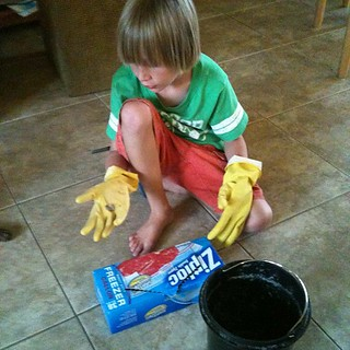 Catching the frogs - they set loose IN my house! #mobsociety #homeschool | by KelliBecton- Adventures