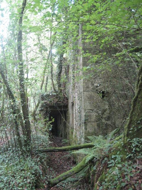 Papelera abandonada en la ruta dos ríos de Vilacoba e San Xusto