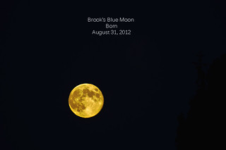 Brook's Birthday Moon | by D Cunningham