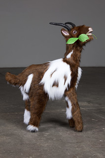 Goat (part of installation) | by Genevieve McLean