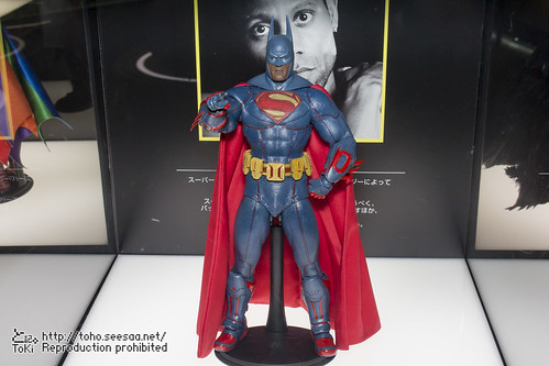 BATMAN100_HotToys_2-695