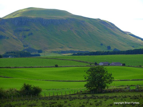 West Lomond | by B4bees