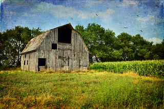 Another Missouri Barn | by keeva999