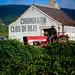 Burgundy Grape Harvest 2012