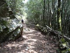 Retour sur le chemin de Prati : les curieux murets du chemin vers le bas et l'arrivée à Isulacciu
