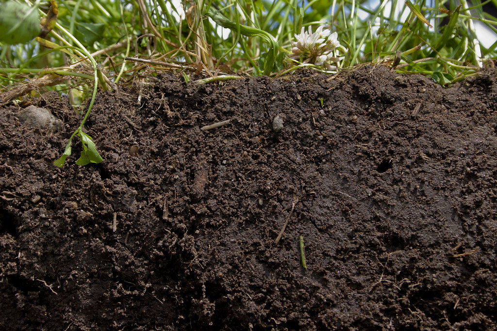 See what healthy soil looks like see what healthy soil for Uses of soil in english