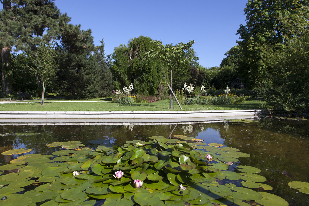 Parc d partemental de la boucle de montesson en savoir for Yvelines parc