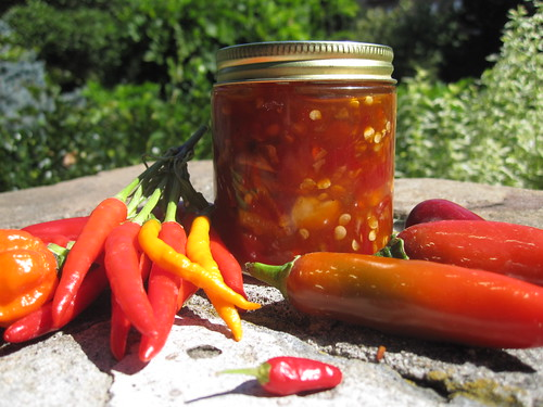 Chile Pepper Sambal | by Brooklyn Botanic Garden