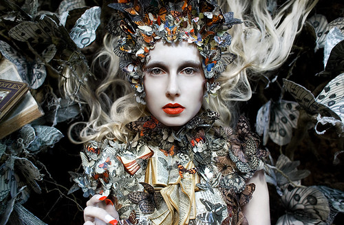 "Wonderland ""The Ghost Swift"" 