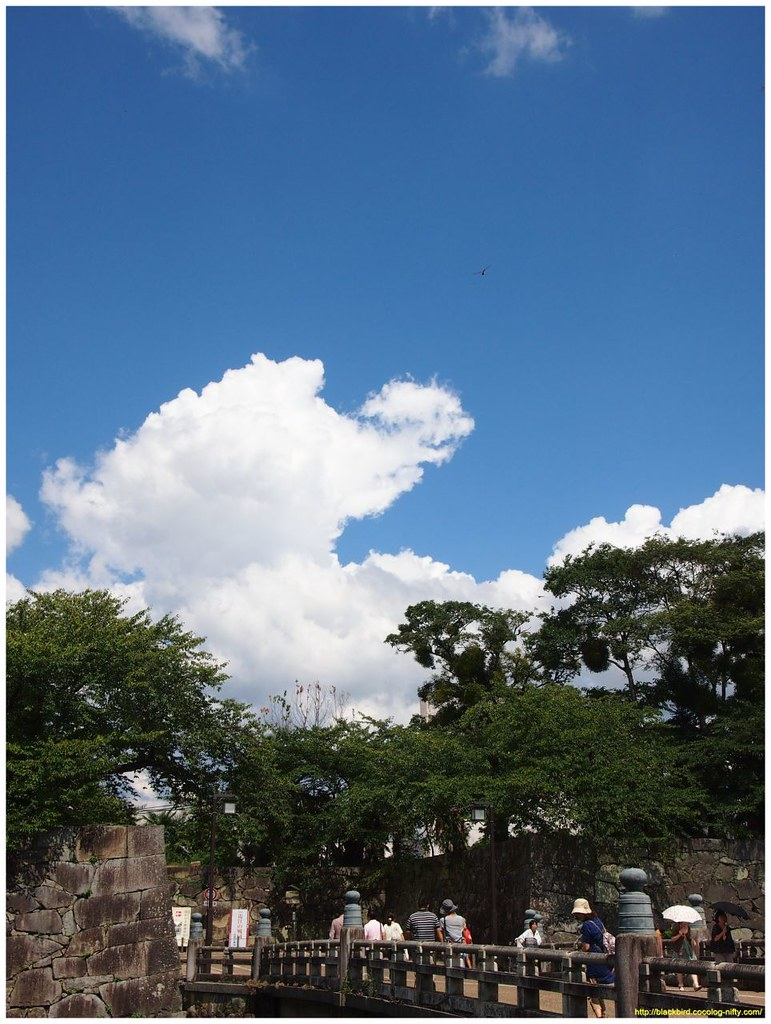sky free