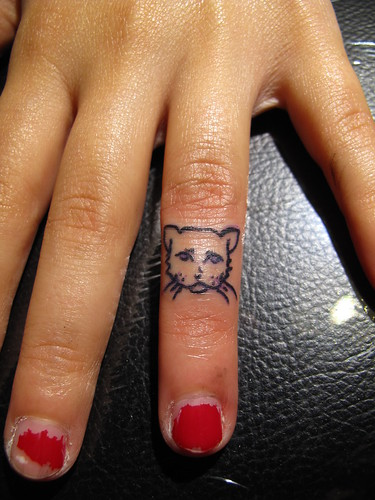 tiny cat face on a tiny hand | by bones!