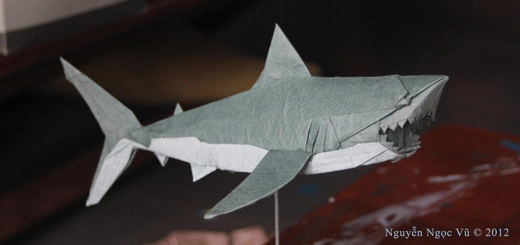 Great White Shark Design And Fold Nguyn Ngc V Flickr