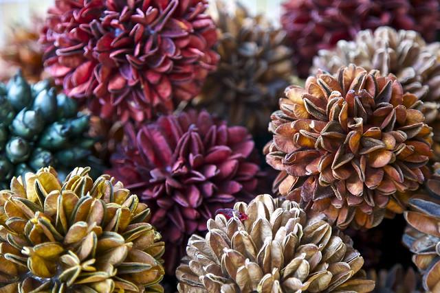 Armario Para Ropa De Muñecas ~ Flores do Cerrado (Artesanato) Brasília Flickr Photo Sharing!