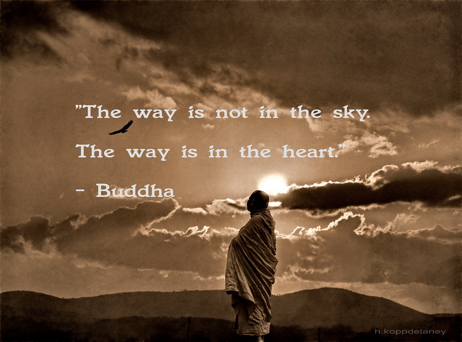 """Awakening The Buddha Within Quotes: """"The Way Is Not In The Sky. The Way Is"""