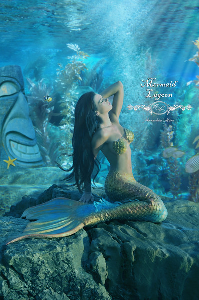 Mermaid Paradise Getty Images 153912730 Www