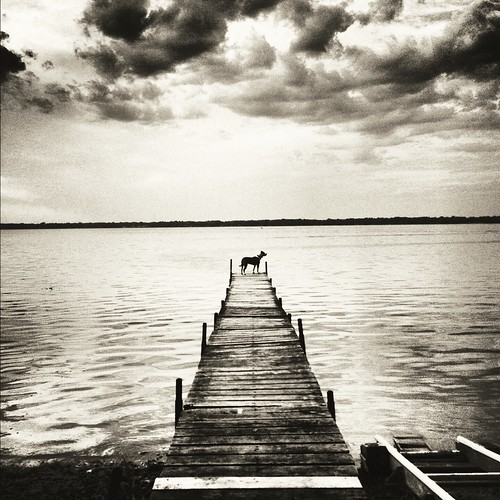 Sitting On The Dock Of The Bay | by bschmidthess