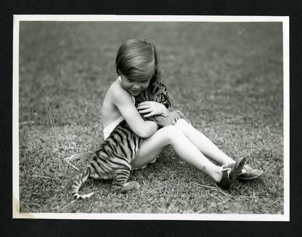 child by tiger
