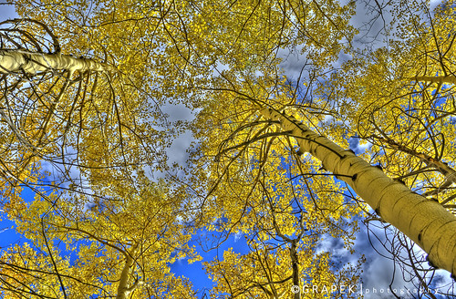wm_Aspen Crowns 2 - HDR | by hgrapek