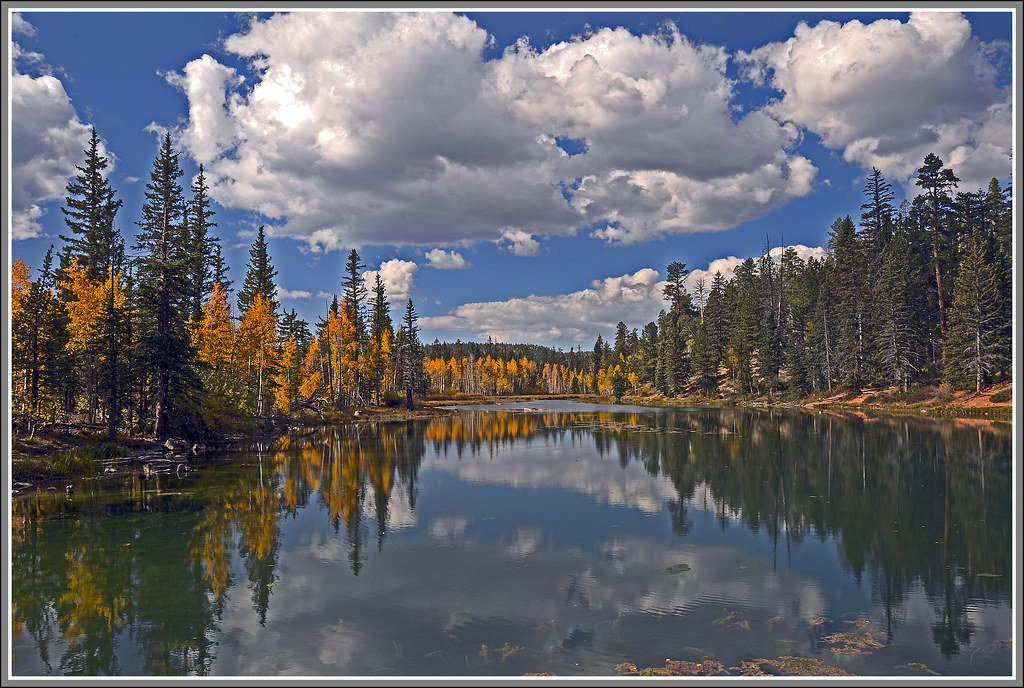 Aspen Mirror Lake Utah Usa Elevation 8421 Feet 2567