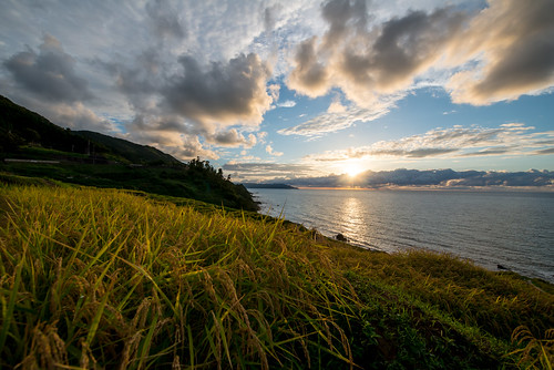 Sunset Rice Terraces | by shinichiro*