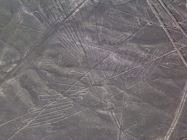 Líneas de Nazca (El Cóndor)