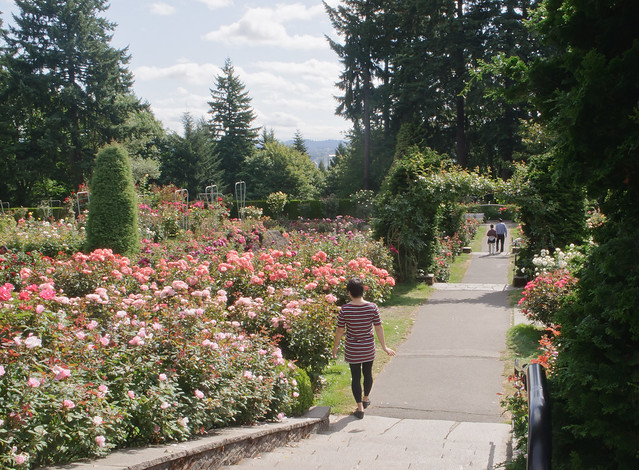 Yours truly at International Rose Test Garden, Portland