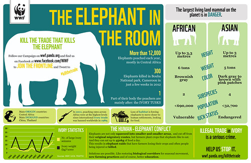 Elephant Infographic | by WWF - Global Photo Network