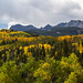 Autumn Splendor in The San Juan Mountains