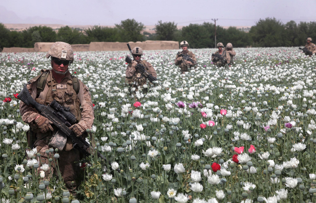 US Soldiers protecting Afghani Opium Fields