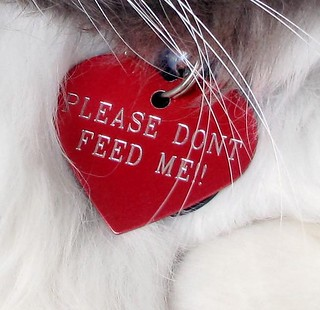 PLEASE DON'T FEED ME! (close-up) | by passiveaggressivenotes