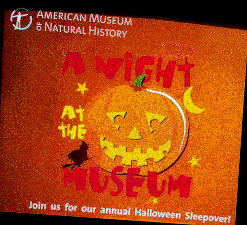 Museum Of Natural History Halloween Sleepover