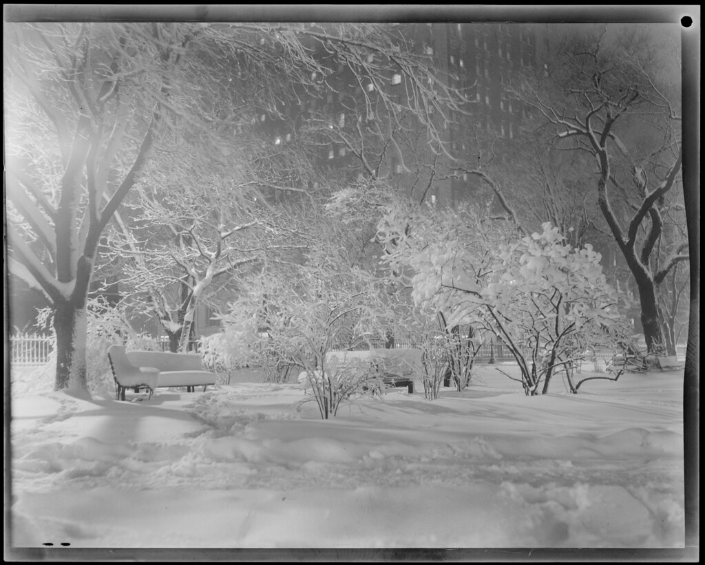 snow scenes at night public garden file name 08 06 03537 u2026 flickr