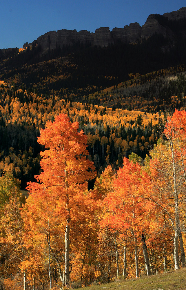 Autumn In The Rockies Owl Creek Pass Colorado Flickr