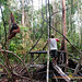 Orangutan World, Tanjung Puting Borneo Adventure-86.jpg