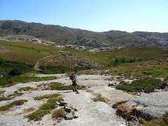 Sur le sentier balisé (jaune) de Quenza après avoir quitté le sentier des Pâturages