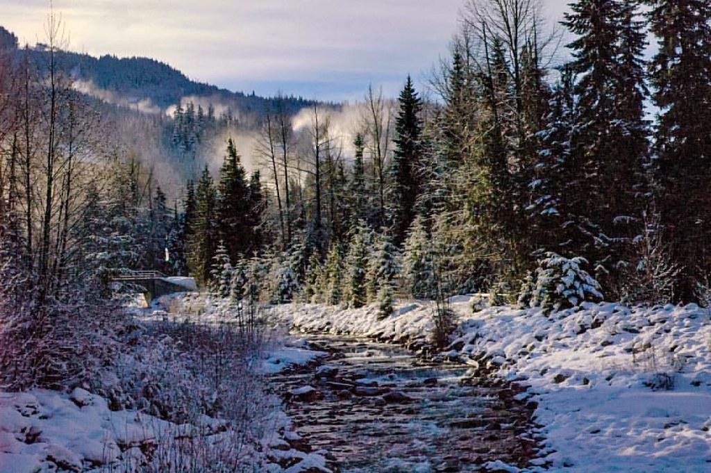 Winter Stream #fingerprintofgod #stunning_shots #winter #snow #nothingisordinary #notsquare #socality #lightstalkers #viewbug#unsquares