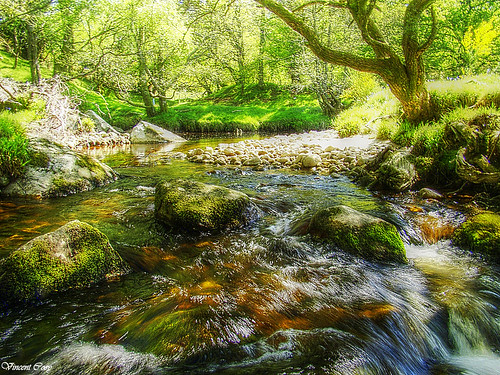 Glencree River County Wicklow | by Vincent Coey Photography