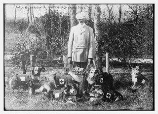 Maj. Richardson & British Red Cross dogs  (LOC) | by The Library of Congress
