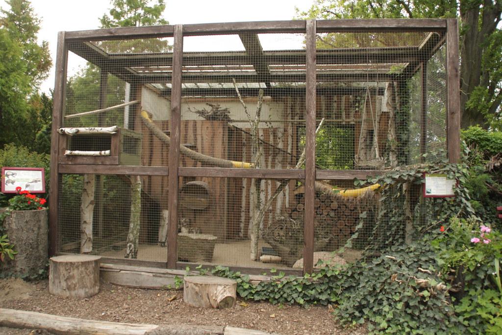 Img 7456 ferret cage nobinx flickr