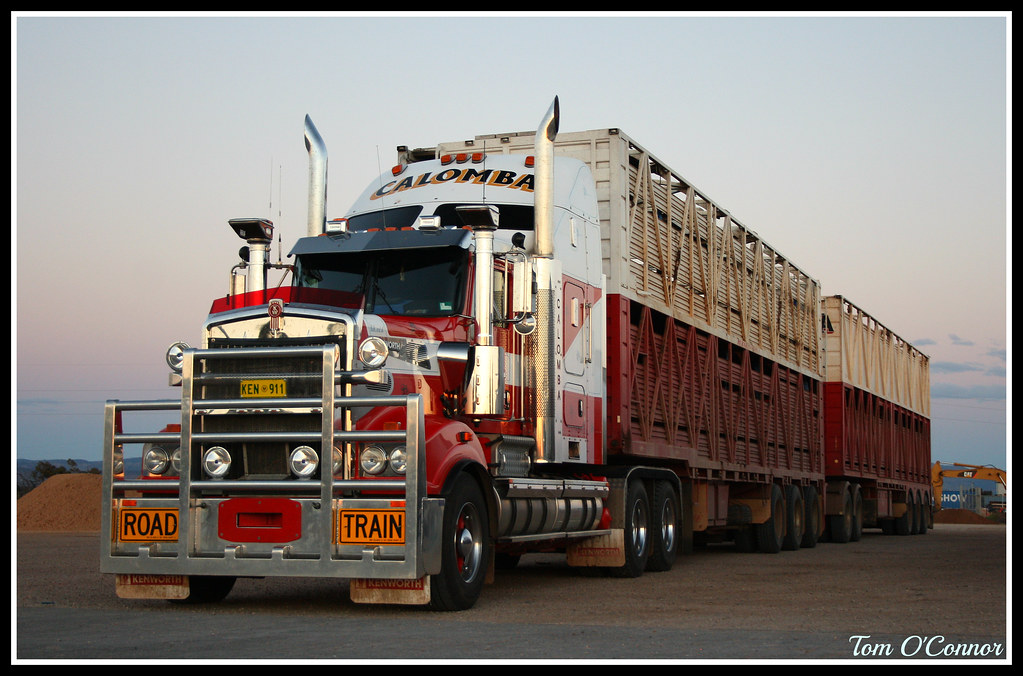 Calomba's Kenworth T909 Double Road