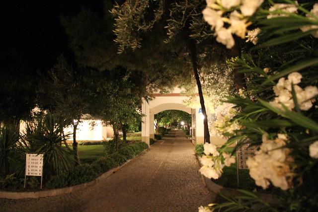 Club Teos by night