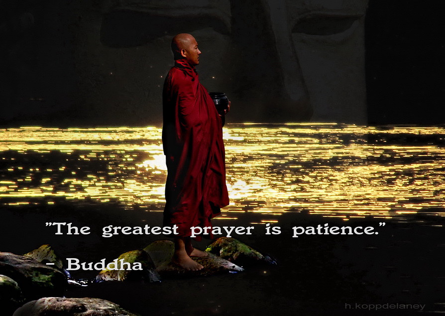 Buddha Quote 43 This Is The 43rd Of 108 Buddha Quotes Flickr