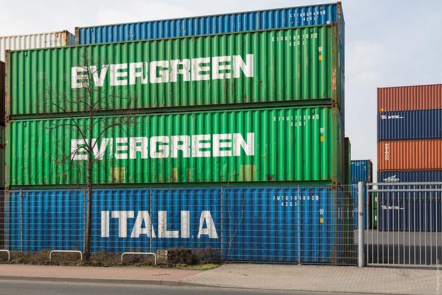evergreen italia flickr photo sharing
