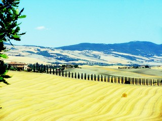 Val d'Orcia | by Cristian_Bosello