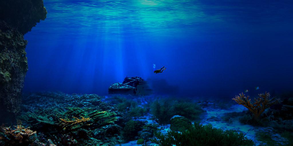 The Ocean Reef Myrtle Beach Sc