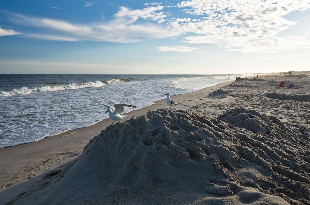 Cupsogue Beach Long Island