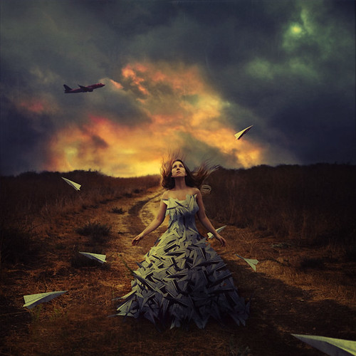 waiting to fly | by brookeshaden