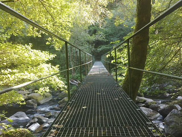 Puente en la Ruta do Bocelo
