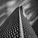 """Honeycomb"" - Grant Murray Photography © - Explored"